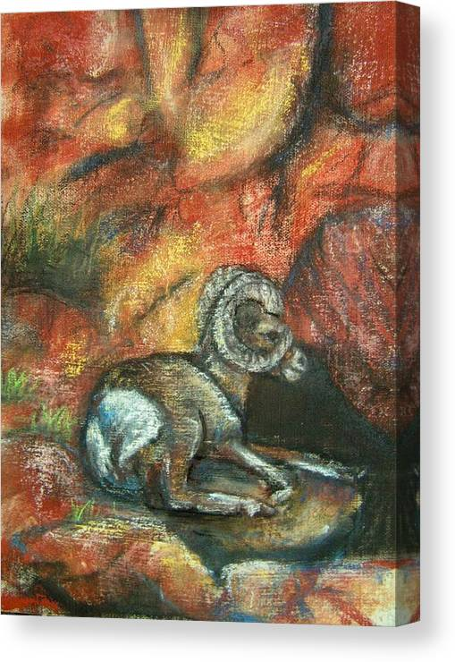 Wildlife Canvas Print featuring the painting Bighorn by Darla Joy Johnson