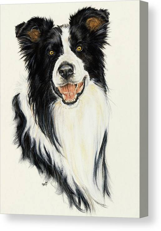 Collie Canvas Print featuring the painting Border Collie by Barbara Keith
