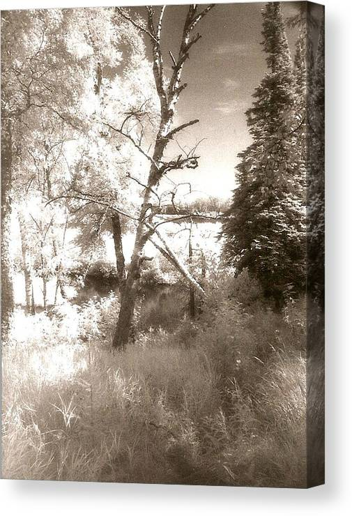 Photograph Canvas Print featuring the photograph Infrared Landscape by Patricia Bigelow