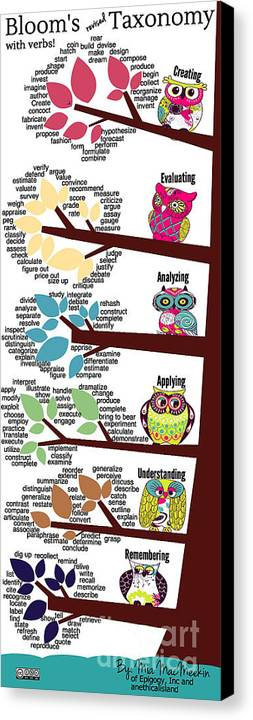 Canvas Print featuring the photograph Bloom's Taxonomy With Verbs by Shawn MacMeekin