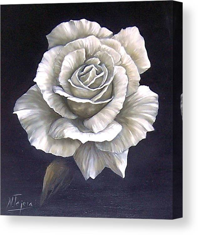 Rose Flower Canvas Print featuring the painting Opened Rose by Natalia Tejera