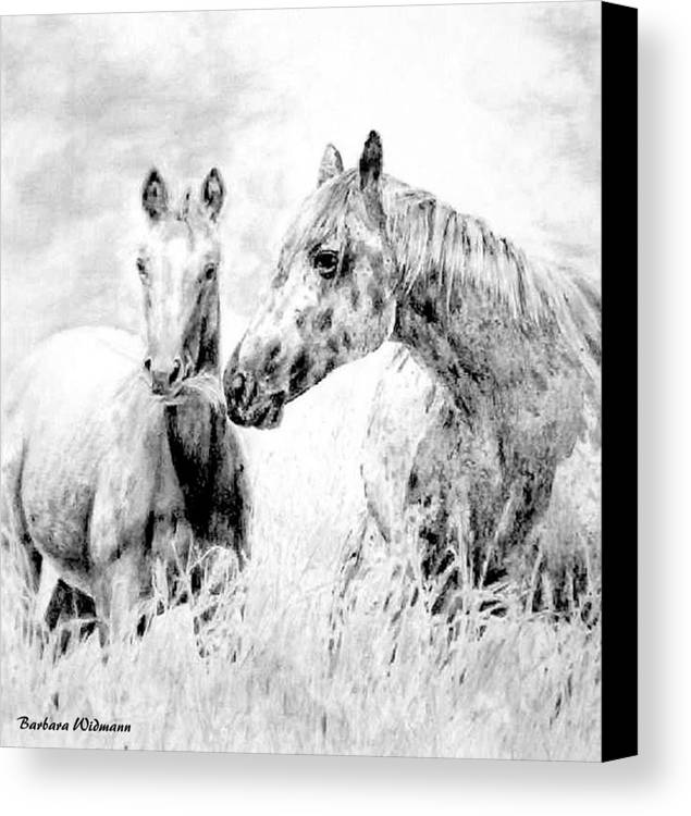 Horses Canvas Print featuring the drawing Grazing by Barbara Widmann