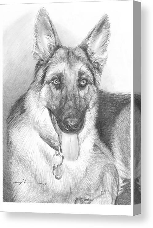 <a Href=http://miketheuer.com Target =_blank>www.miketheuer.com</a> German Shepherd Pencil Portrait Canvas Print featuring the drawing German Shepherd Pencil Portrait by Mike Theuer