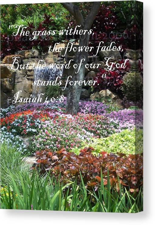 Inspirational Canvas Print featuring the photograph Stands Forever by Pharris Art