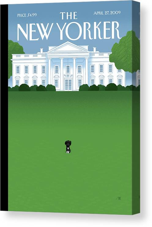 Obama Canvas Print featuring the painting Bo by Bob Staake