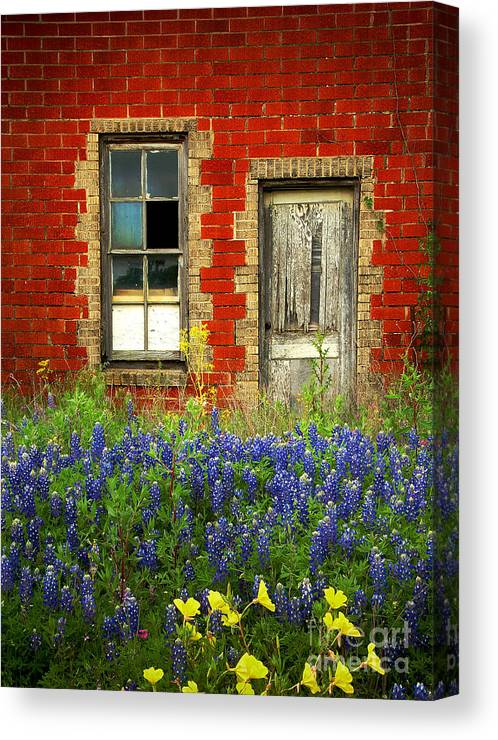 Door Canvas Print featuring the photograph Beauty and the Door - Texas Bluebonnets wildflowers landscape door flowers by Jon Holiday