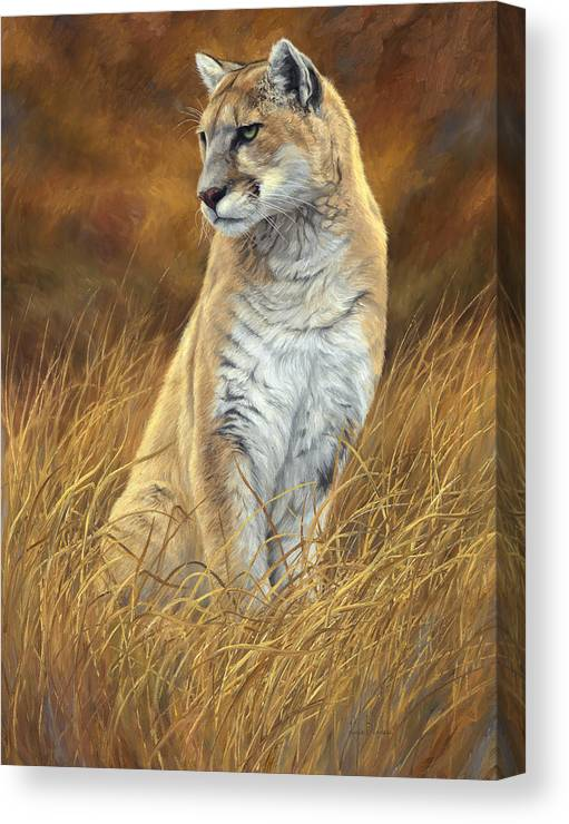 Puma Canvas Print featuring the painting Mountain Lion by Lucie Bilodeau