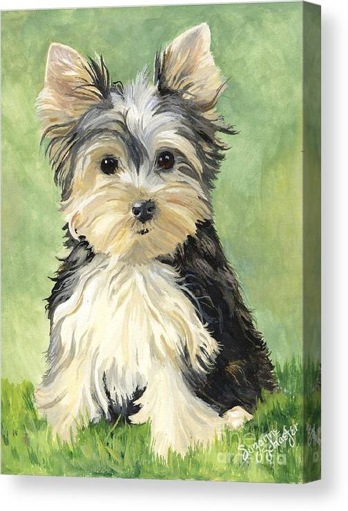 Yorkie Canvas Print featuring the painting Moxie Roxie by Suzanne Schaefer