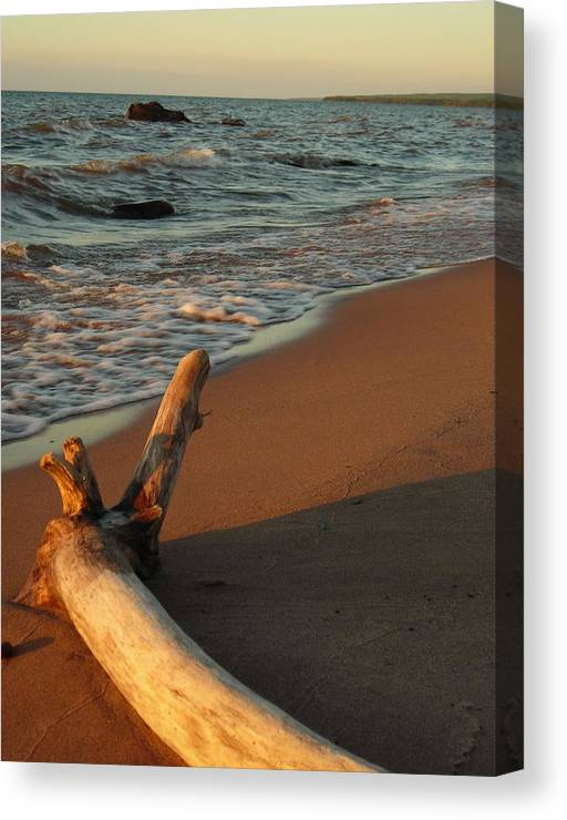 Beach Canvas Print featuring the photograph All alone by Peter Mowry