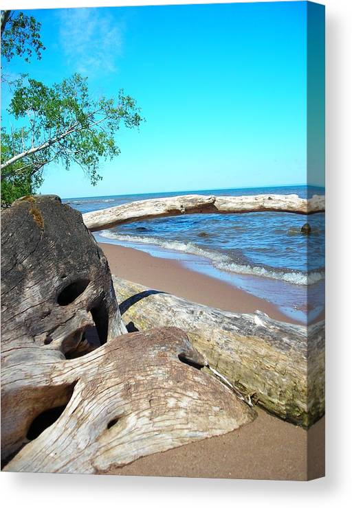 Beach Canvas Print featuring the photograph Beach Lodging by Peter Mowry