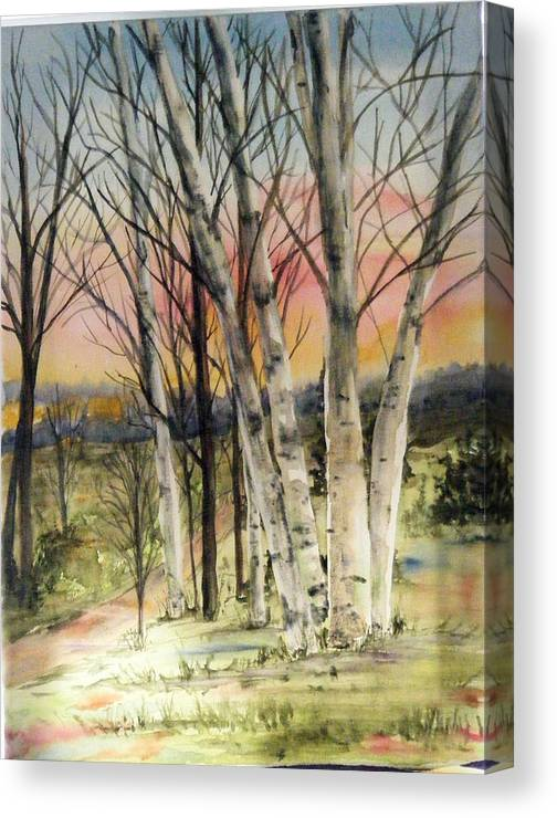 Trees Canvas Print featuring the painting Birch Trees on Canvas by Diane Ziemski