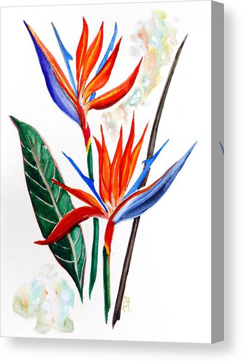 Floral Canvas Print featuring the painting Canal Lily  by Karin Dawn Kelshall- Best