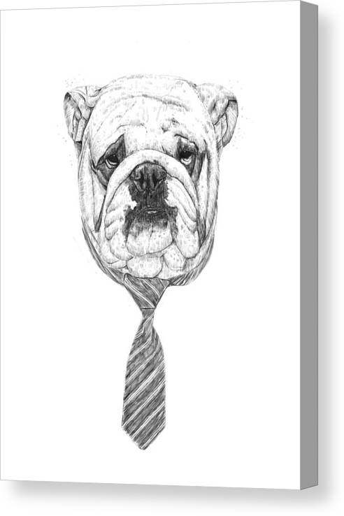 Dog Canvas Print featuring the drawing Cooldog by Balazs Solti