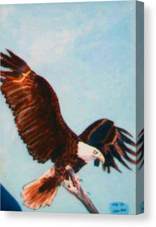 Eagel Canvas Print featuring the painting Eagle for Flight by Stan Hamilton