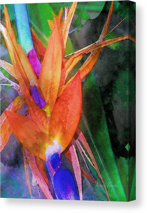 Bird Of Paradise Canvas Print featuring the digital art Hawaiian Abstract by James Temple
