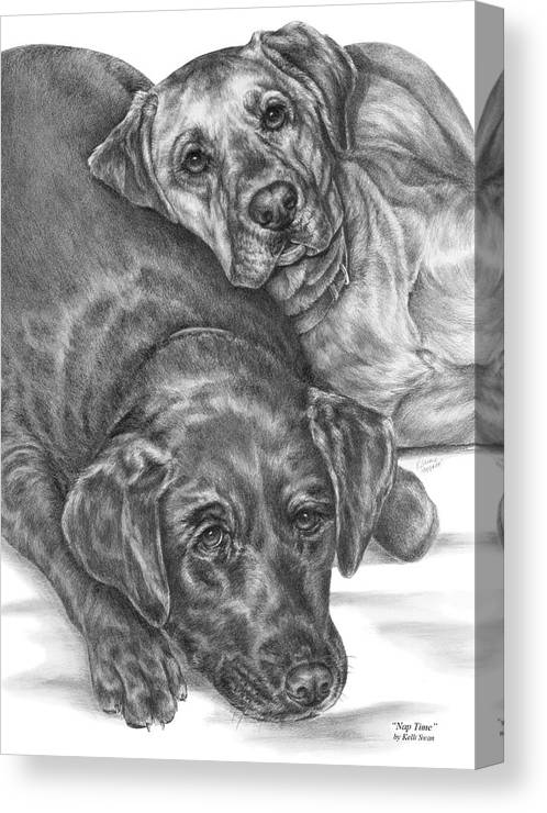 Two Canvas Print featuring the drawing Labrador Dogs Nap Time by Kelli Swan