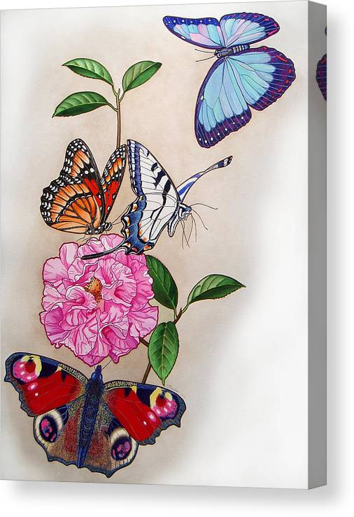 Butterflies Canvas Print featuring the painting Ladies of the Camellia by Vlasta Smola