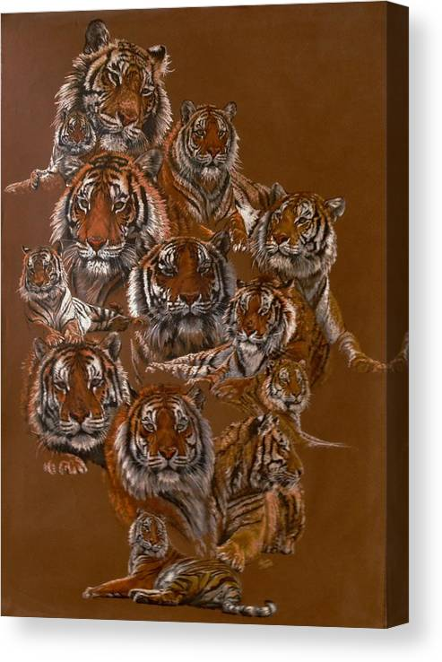 Tiger Canvas Print featuring the drawing Tigers of Noah's Lost Ark Sanctuary by Barbara Keith