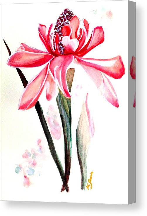 Pink Canvas Print featuring the painting Torch Ginger Lily  2 by Karin Dawn Kelshall- Best