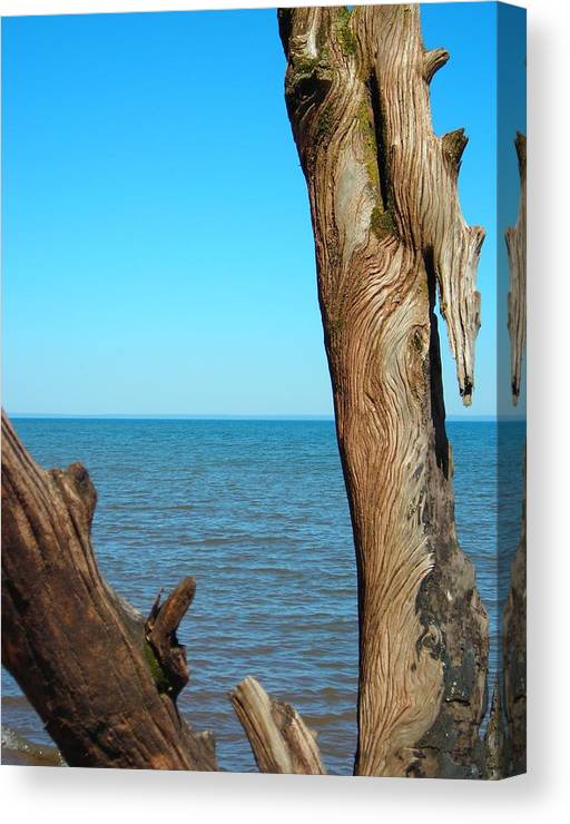 Ocean Canvas Print featuring the photograph Tribal Markings by Peter Mowry