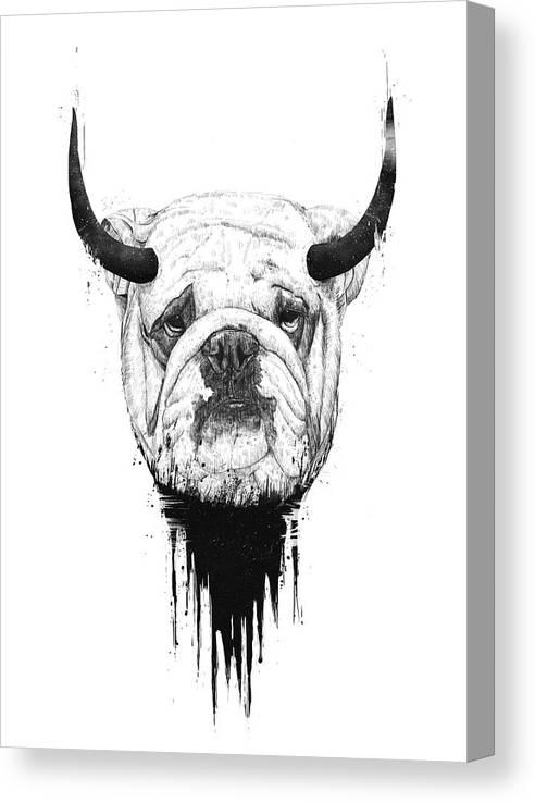 Bulldog Canvas Print featuring the drawing Bull dog by Balazs Solti