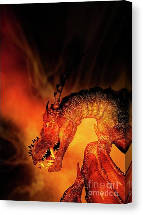 Nobody Canvas Print featuring the photograph Dragon by Victor Habbick Visions/science Photo Library