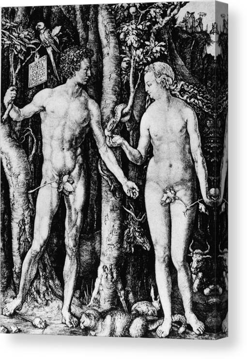 Engraving Canvas Print featuring the photograph Engraving Of Adam And Eve by Hulton Archive