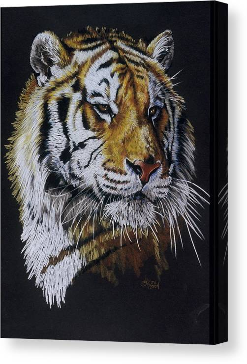 Panthera Canvas Print featuring the drawing Nanook the Tiger by Barbara Keith