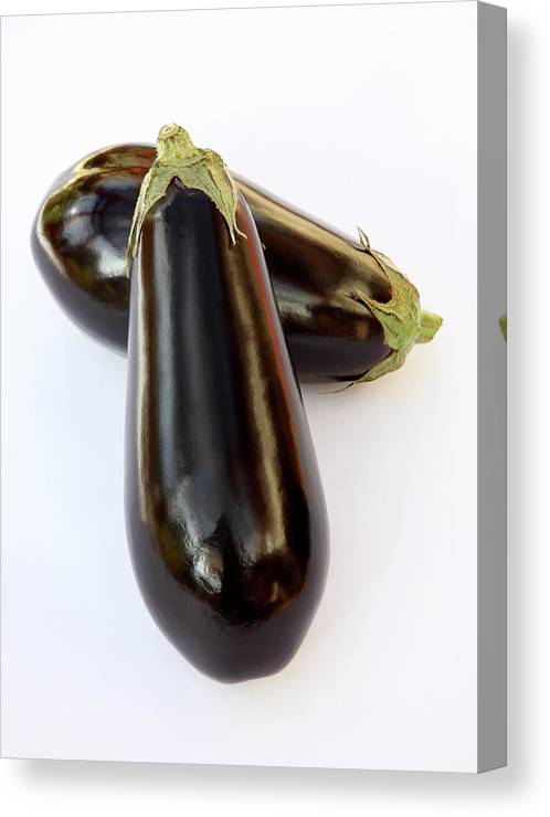 White Background Canvas Print featuring the photograph Ripe, Organic Aubergines On White by Rosemary Calvert
