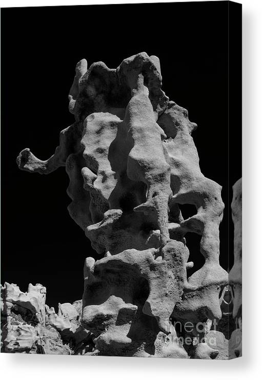 Fantasy Canyon Canvas Print featuring the photograph Siltstone Curl by Mike Dawson