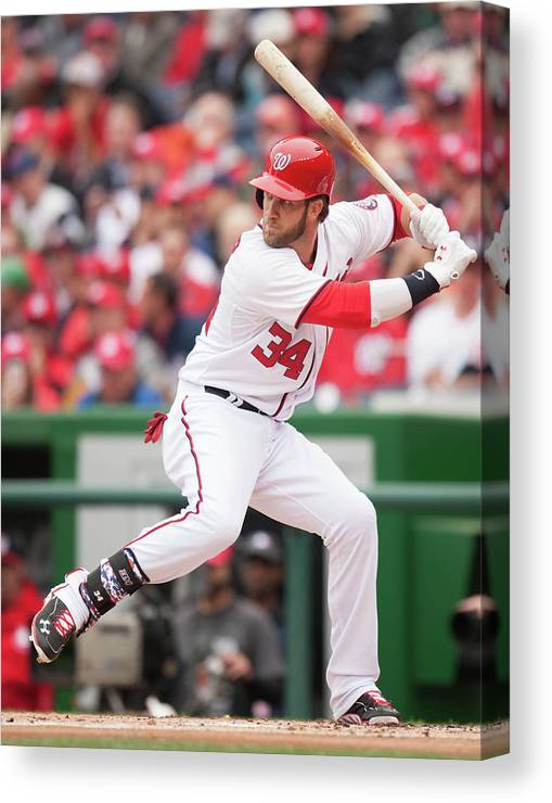 National League Baseball Canvas Print featuring the photograph Bryce Harper by Mitchell Layton