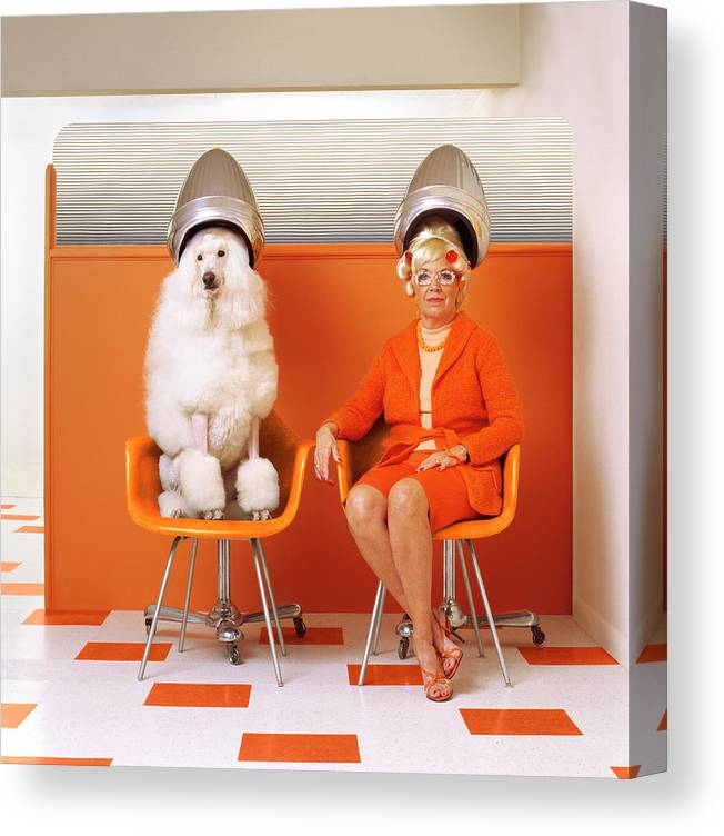 Orange Color Canvas Print featuring the photograph Poodle And Senior Woman Sitting Under by Kendall Mcminimy
