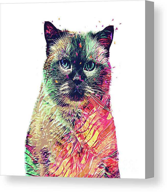 Cat Canvas Print featuring the digital art Abstract Birman by Trindira A
