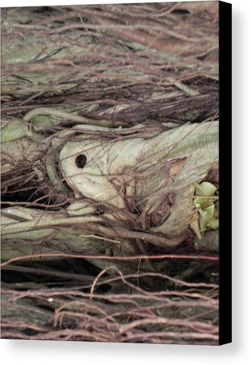 Nature Art Canvas Print featuring the photograph Abstract Nature 12 by Nili Tochner