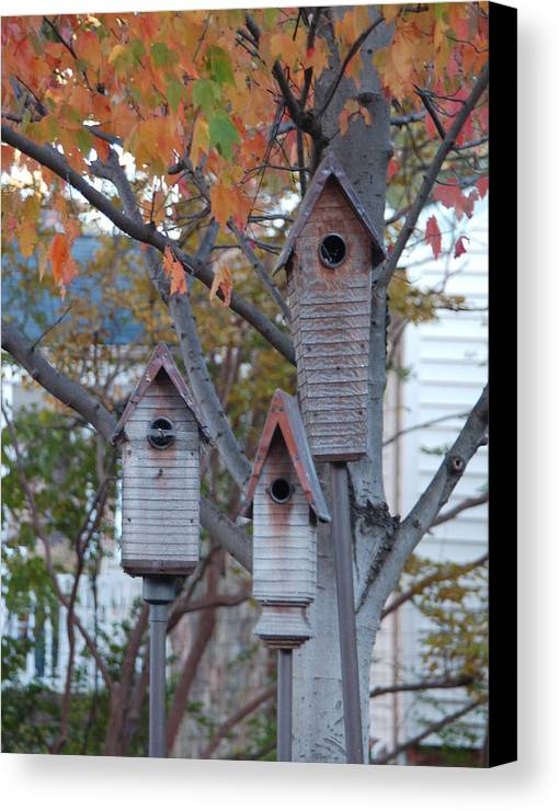 Birdhouse Canvas Print featuring the photograph Awaiting Spring by Suzanne Gaff