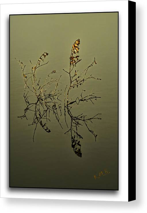 Water Canvas Print featuring the photograph Fogy Reflection by Keith Hutchings