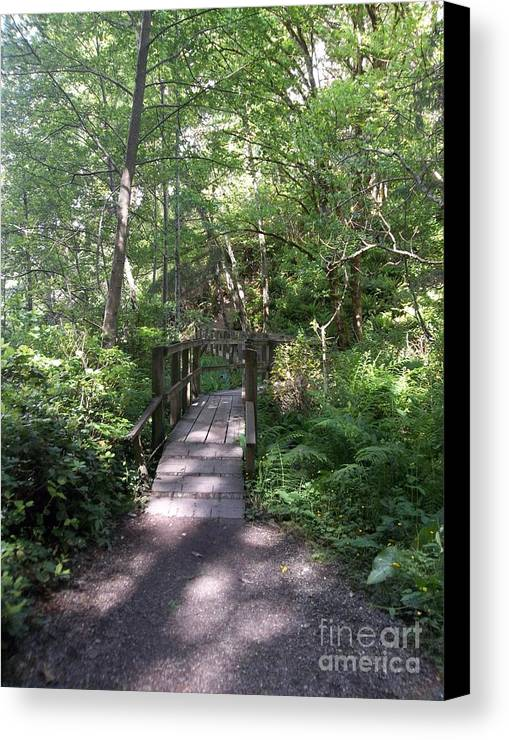 Wooden Bridge Canvas Print featuring the photograph Forest Passage by Pamela Roberts-Aue