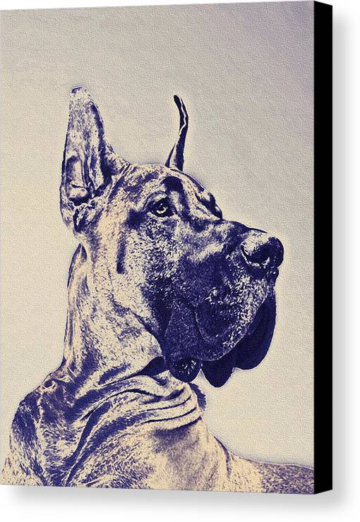 Great Dane Canvas Print featuring the digital art Great Dane- Blue Sketch by Jane Schnetlage