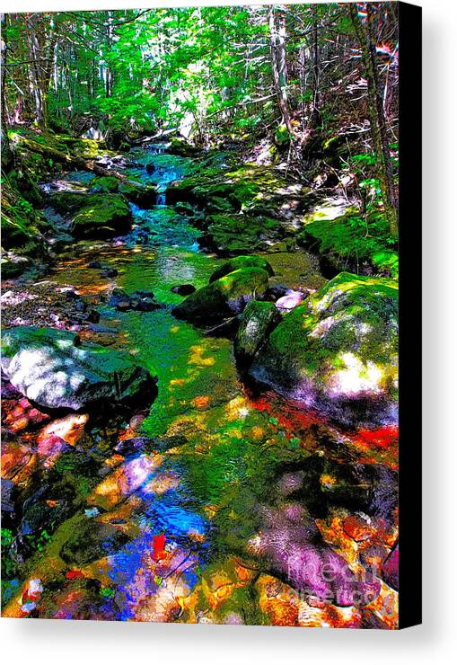 Landscape Canvas Print featuring the photograph Hcbyb 276 by George Ramos
