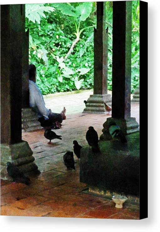 Commune Canvas Print featuring the photograph Communing With The Birds by Steve Taylor