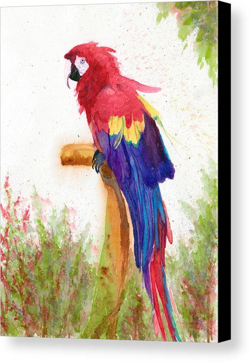 Scarlet Macaw Canvas Print featuring the painting Scarlett by Diane Toro
