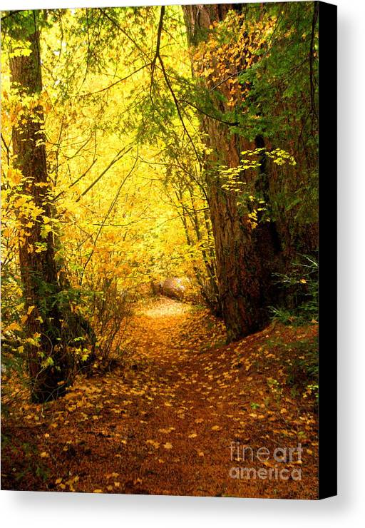 Serenity Scenes Photography Landscape Scenic Pacific Northwest Stream Forest Woods Trees River Rocks Shasta Eone Oregon Water Green Nature Union Creek Fall Autumn Canvas Print featuring the painting Uc10.12 by Shasta Eone