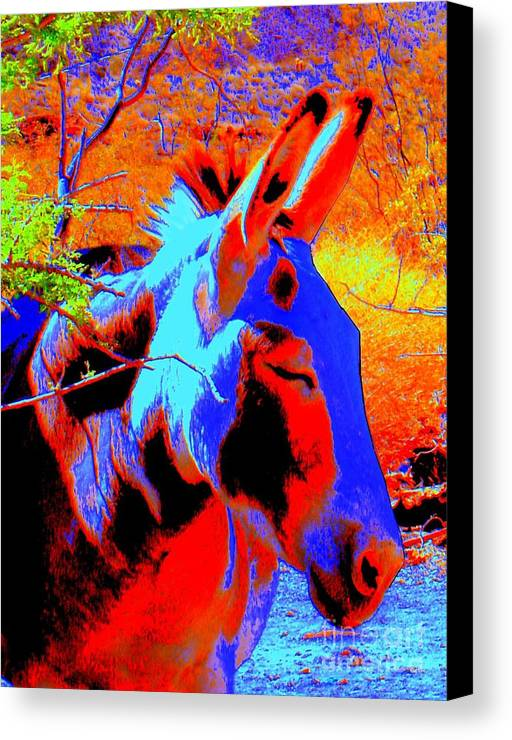 Burro Canvas Print featuring the photograph Oatman Burro by Lessandra Grimley
