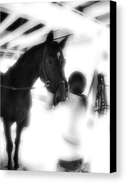 Horse Canvas Print featuring the photograph Tacking Up by Donna Thomas