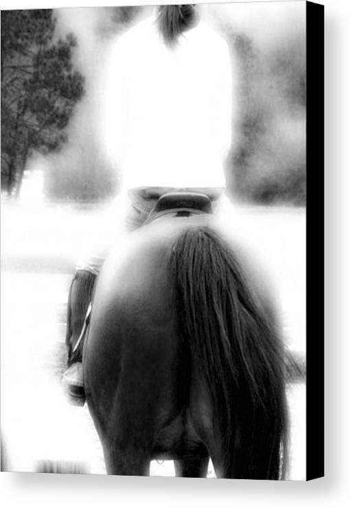 Horse Canvas Print featuring the photograph A Pair Of Tails by Donna Thomas