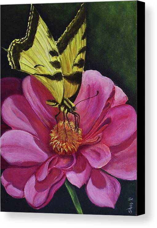 Flower Canvas Print featuring the painting Butterfly On A Pink Daisy by Silvia Philippsohn