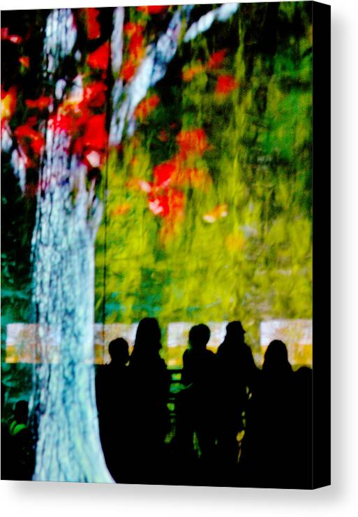 Sillhouettes Canvas Print featuring the photograph Die Zuschauer - The Spectators by Linda McRae