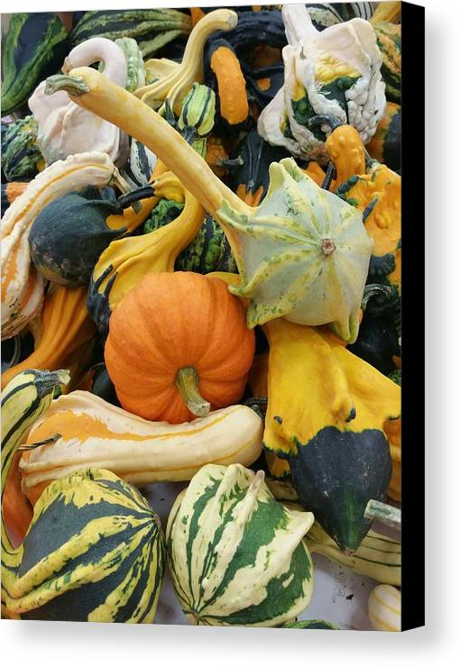 Season Canvas Print featuring the photograph Fall Harvest by Sally Cooper