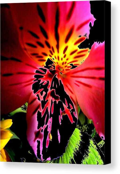 New Canvas Print featuring the digital art Floral 711 by Chuck Landskroner