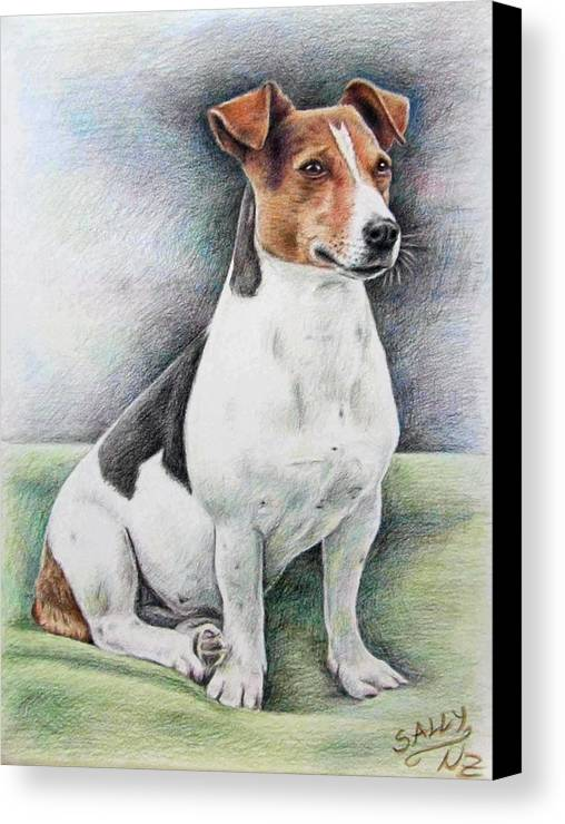 Dog Canvas Print featuring the drawing Jack Russell Terrier by Nicole Zeug
